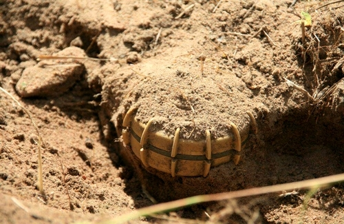 A Sardashti citizen was maimed after a landmine explosion