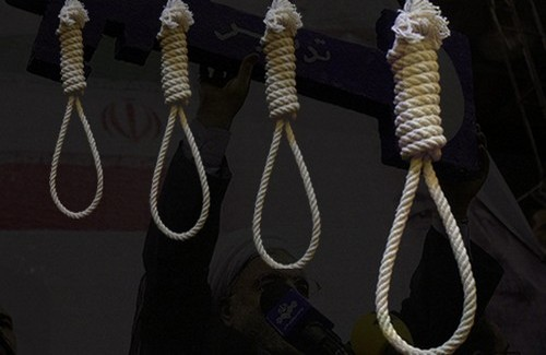 Since Rouhani has taken office, 1193 people have been executed